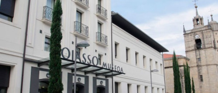 museo_oiasso_01